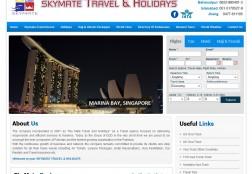 skymatetravel.com